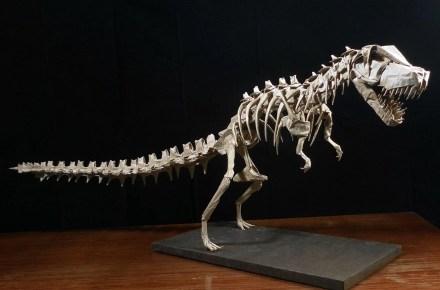 Origami Dinosaur Skeletons
