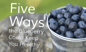 Blueberry Infographic | LifeTrak