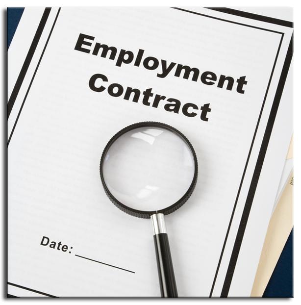 Employment Contract Executive  Create Professional Resumes Online