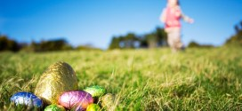 Easter Egg Hunts