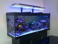 Aquarium LED Lighting Photos best Reef Aquarium LED ...