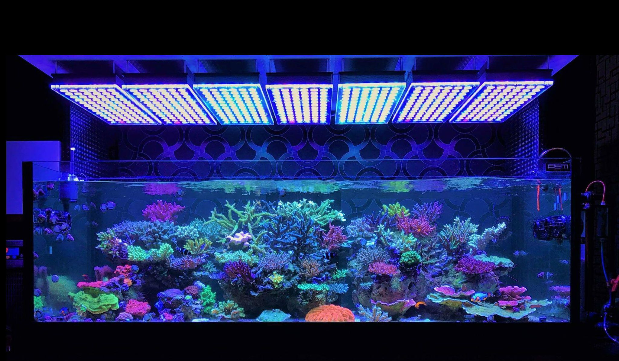 Nano Zee Aquarium Verlichting Atlantik V4 Reef Aquarium Led Lighting Orphek Aquarium