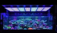 Atlantik V4 Reef Aquarium LED lighting  Orphek Aquarium ...