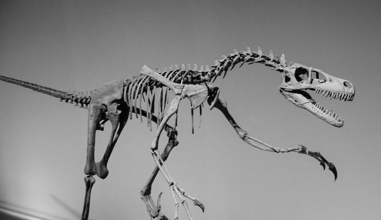 En los huesos