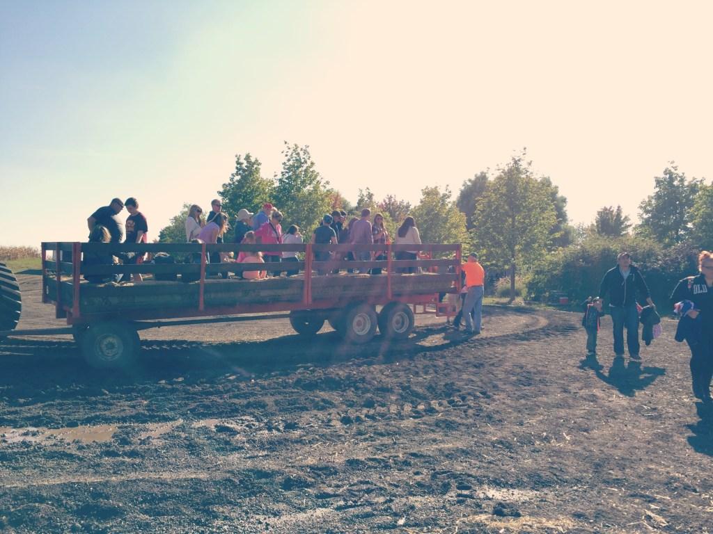 konows-corn-maze-tractor-ride