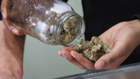 AP_legal_marijuana_kab_150304_16x9_992