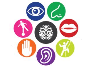 La música genera un mayor desarrollo del cerebro