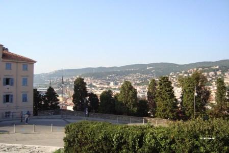 La Cantinella Di Napoli Trieste