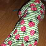 Zipadee-zip and We're Ready for Bed #Review and #Giveaway ~ CAN/US 06/23