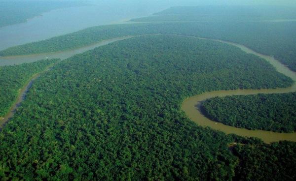 ブラジルのアマゾン川流域