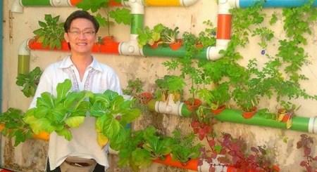 庭がなければ壁を使おう。マレーシアのホテルが自作した鮮やかなパイプ式菜園