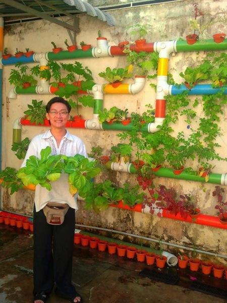 マレーシアの土管式菜園