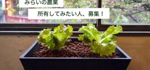 遊休地求む!未来の農業「アクアポニックス」を所有したい人を大募集!