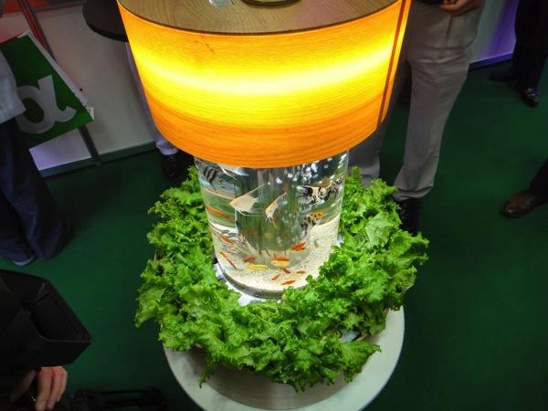 帝人フロンティアとa.a.c.が共同開発したアクアリウム水槽、野菜も同時に栽培