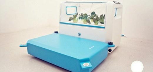 土地がないなら海で農業を。ロンドンで開発中の浮遊式水耕栽培器「Sealeaf」