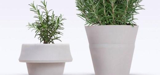 もう鉢のサイズ選びで悩まない!植物と一緒に成長するプランター「fold pot」
