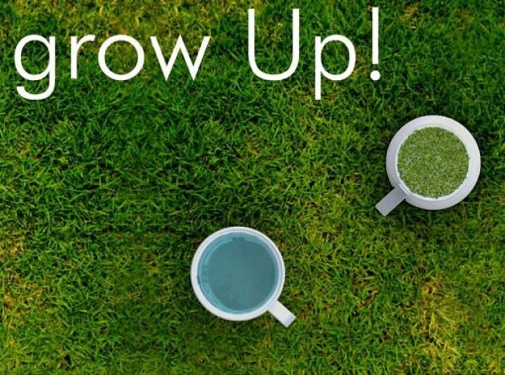 """マグカップの""""底""""で菜園。飲んだら裏返してグリーンを育てよう"""