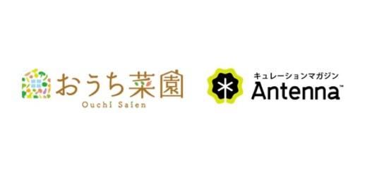 「おうち菜園」がキュレーションマガジン「Antenna」でも読めるようになりました!