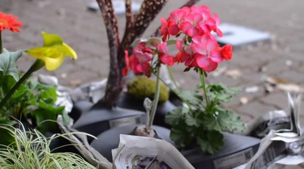 saddle-blossom-8