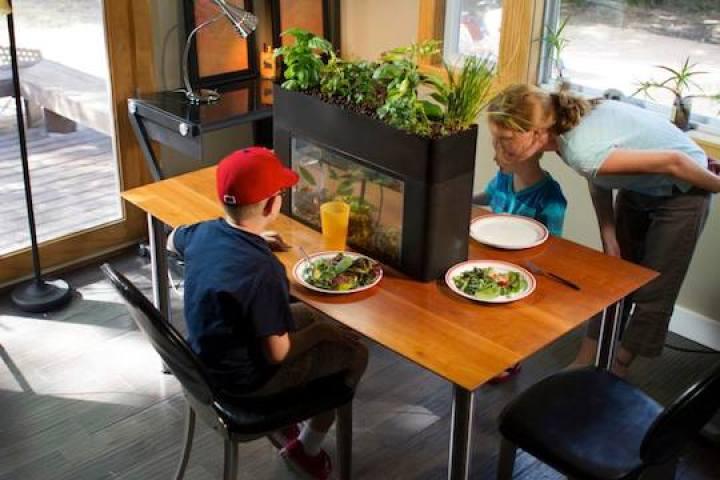 2015年に日本上陸?お部屋に生態系がやってくる家庭用ビオトープ3つ