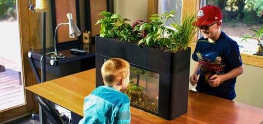 2015年に日本上陸?お部屋に生態系がやってくるエコサイクル菜園3つ