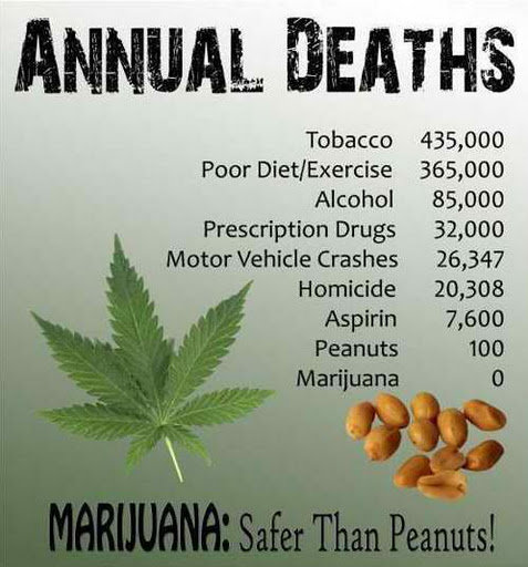 Marijuana Health Facts
