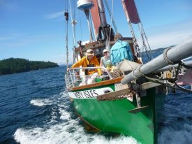 Misty Isles Adventures Cortes Island Tours