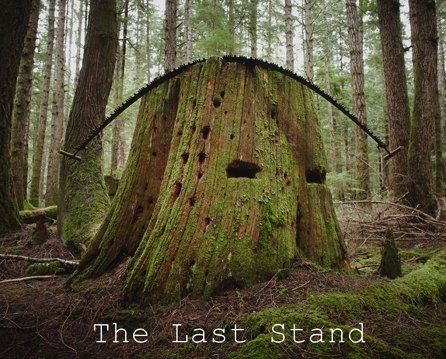 The Last Stand – Photography Solo Show