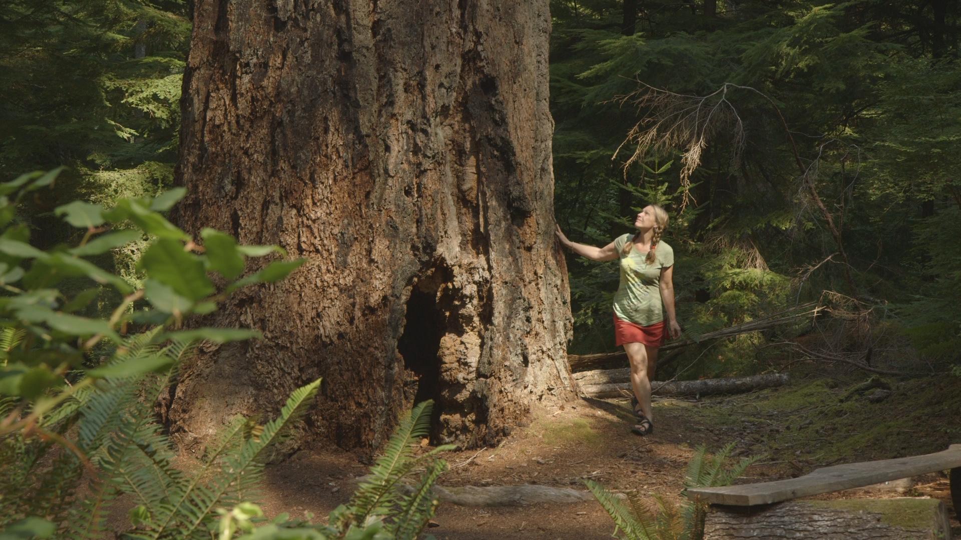 Jill & her forest friend