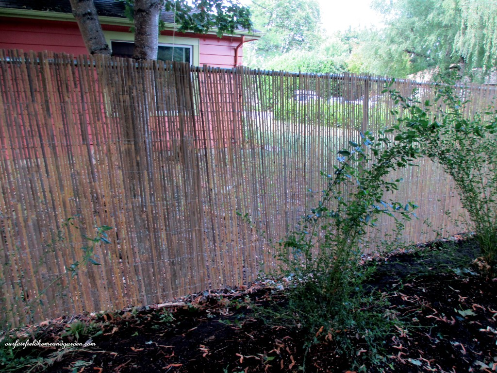 Bamboo Fence Canada Diy Beautify A Chain Link Fence With Bamboo Our Fairfield