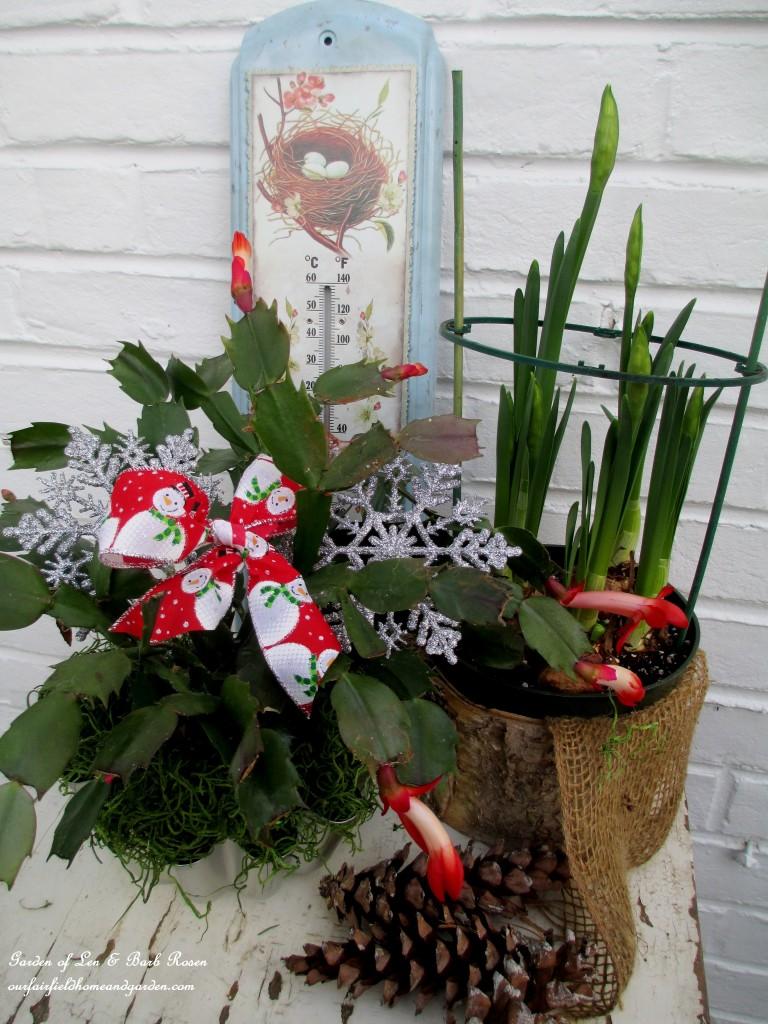 Fullsize Of Gifts For Gardeners