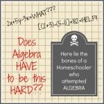 Homeschool Algebra Helps