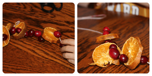 Cranberry activities for a literature-based Thanksgiving or Christmas study