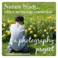 A Nature Study Photography Project For Any Age