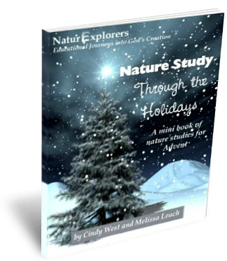 Advent Themed Nature Study