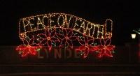 Peace On Earth Christmas Lights - Christmas Lights Card ...