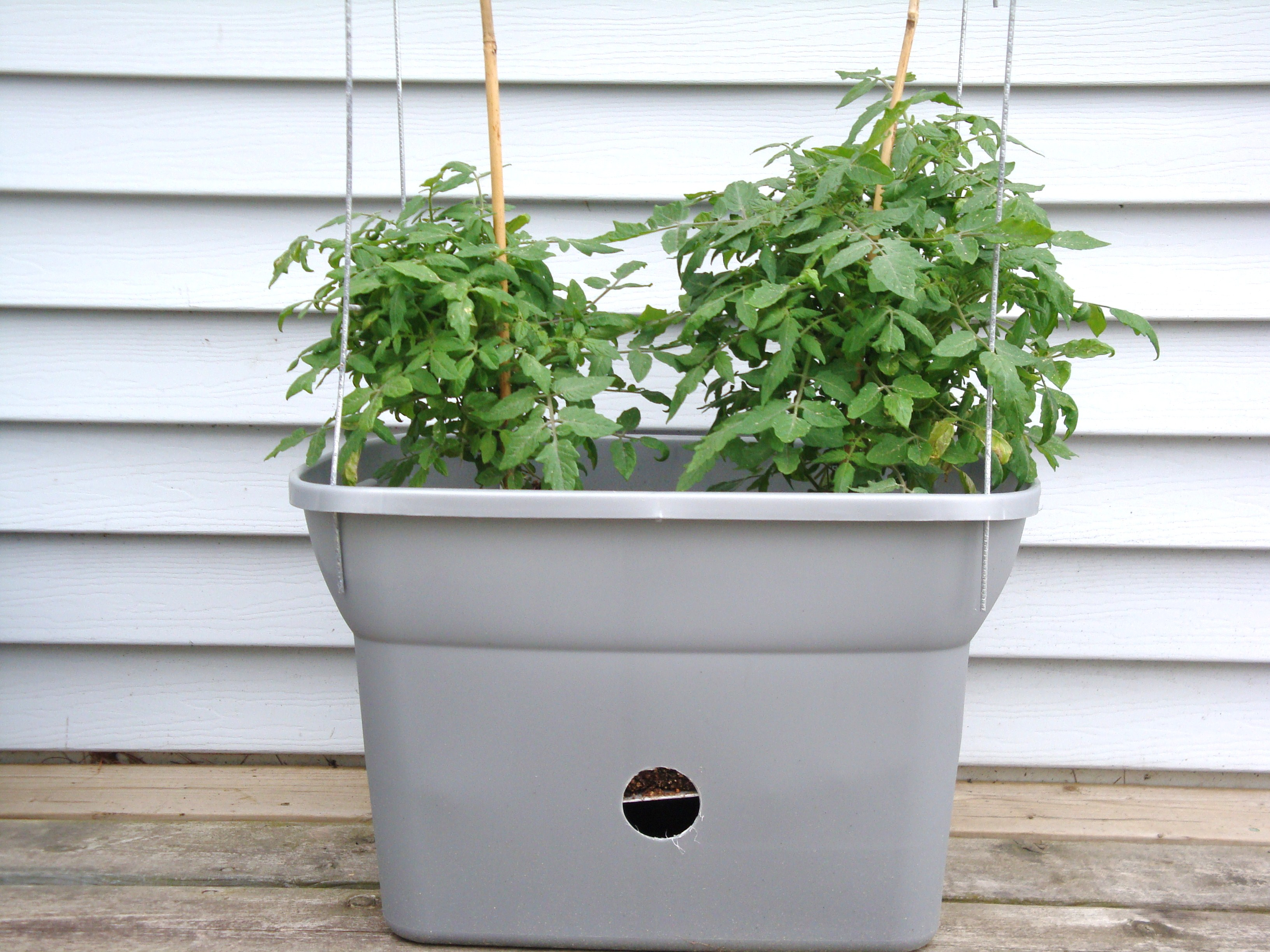 Make Self Watering Planters Our Northern Homestead