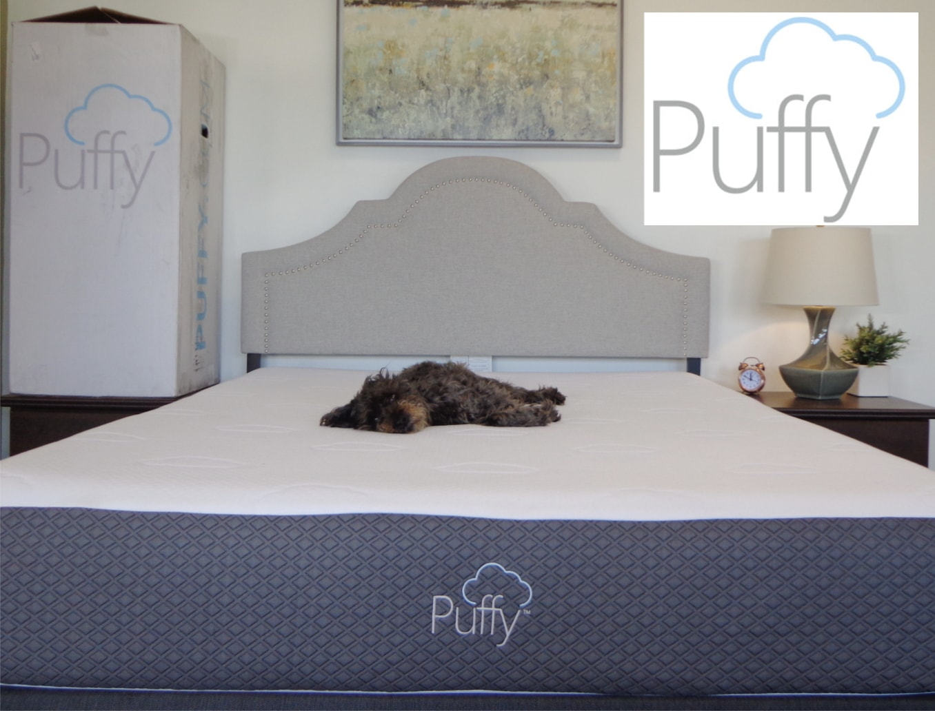 Casper King Mattress Review Puffy Vs Casper Mattress Review Price Where To Buy Coupons