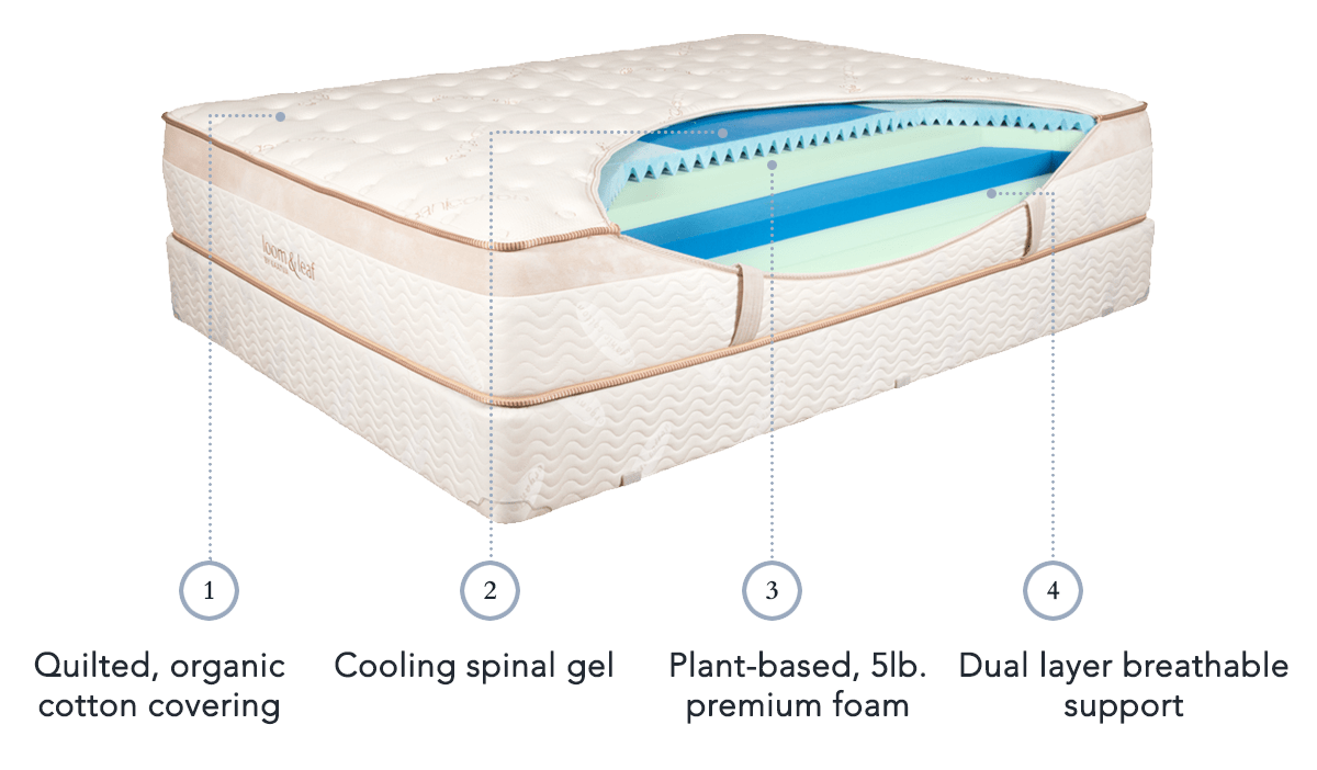 Helix Vs Loom And Leaf Casper Wave Vs Loom And Leaf Mattress Comparison Review