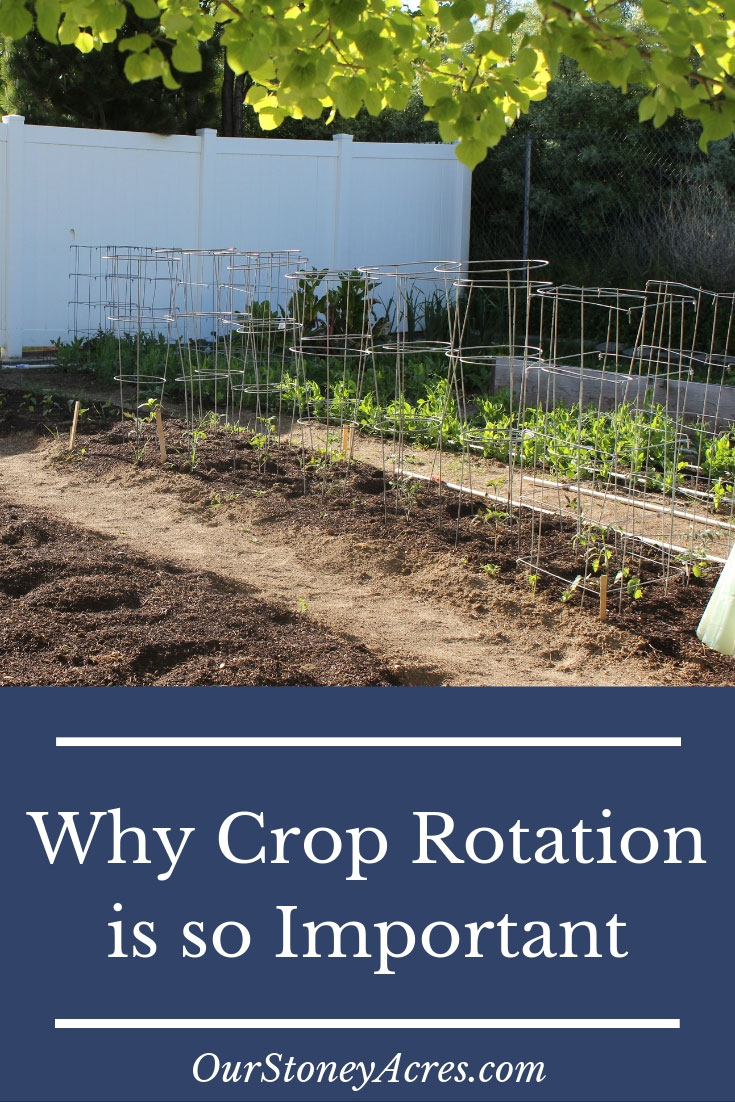 Home Garden The Importance Of Crop Rotation In The Home Garden Our Stoney Acres