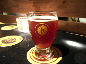 Full of Hops by Marina and Het Nest – #OTTBeerDiary Day 389