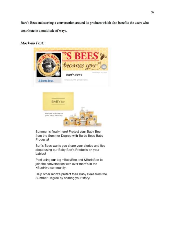 JOUR4530_SMCampaignProposal_Spring15_BurtsBees_38