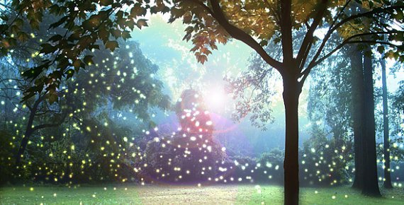11/17/15 O&A NYC Inspirational Tuesday: Chasing Fireflies