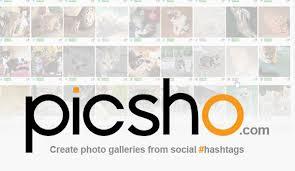 Curation Picsho