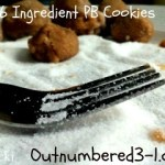 6 Ingredient, No Flour, No Butter, Peanut Butter Cookies Recipe