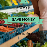 5 Ways to Save Money on Groceries and Necessities