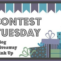 February 9th Contest Tuesday Blog Giveaway Link Up