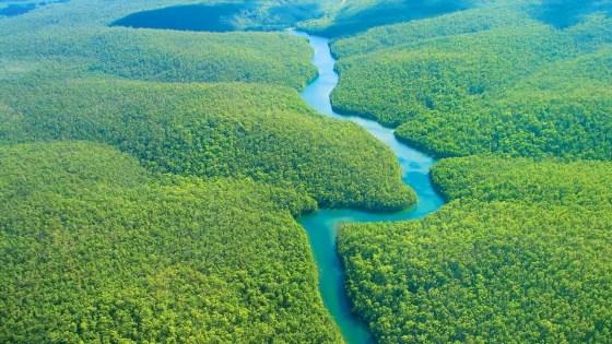 170718_floresta amazônica