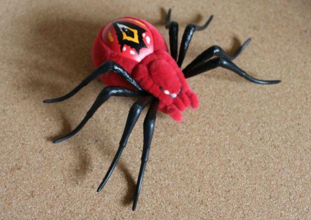 Wild Pets Spider
