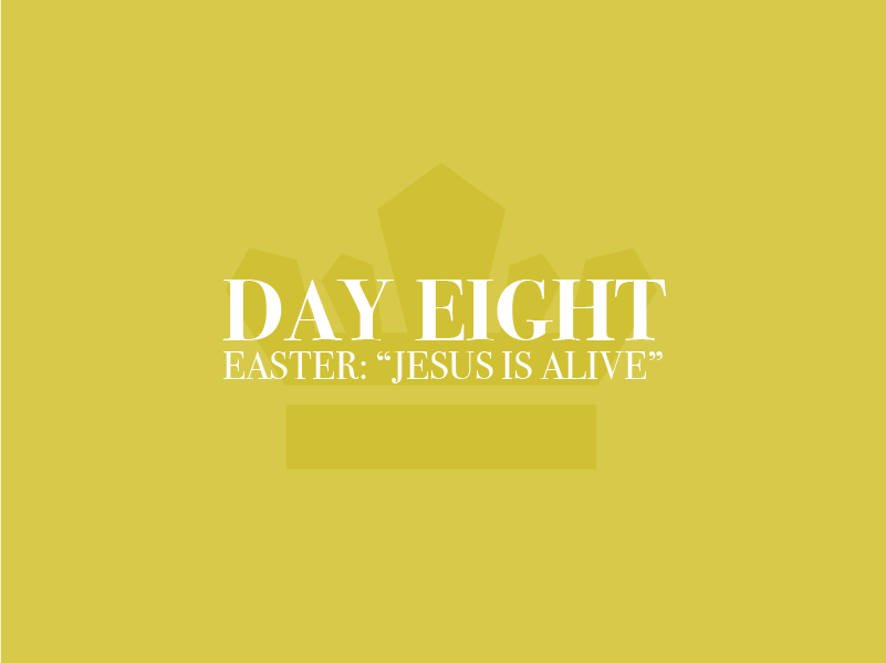 Day Eight Thumbnail